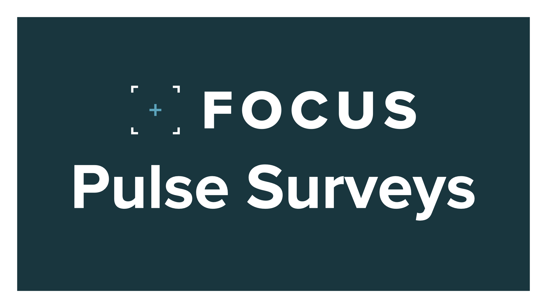 Focus Pulse Surveys