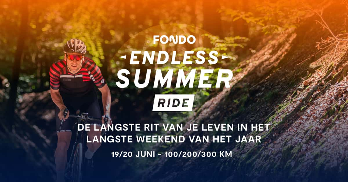 fondo endless summer promo banner