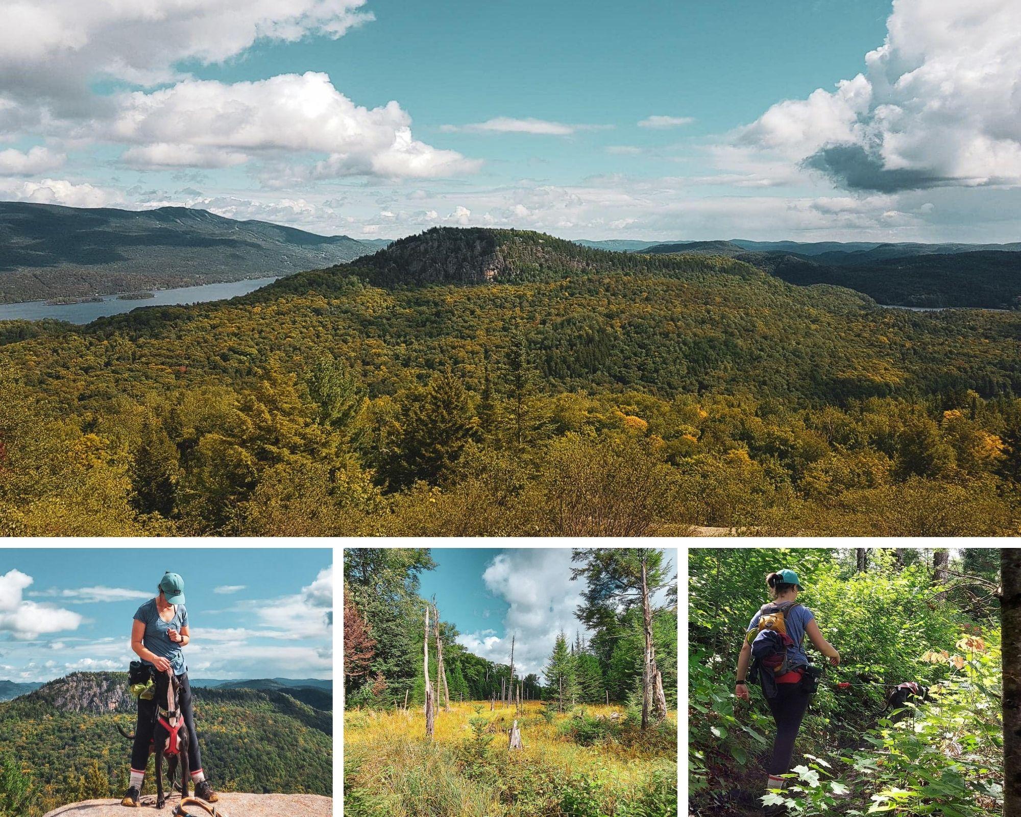 Montage photo de la montagne verte