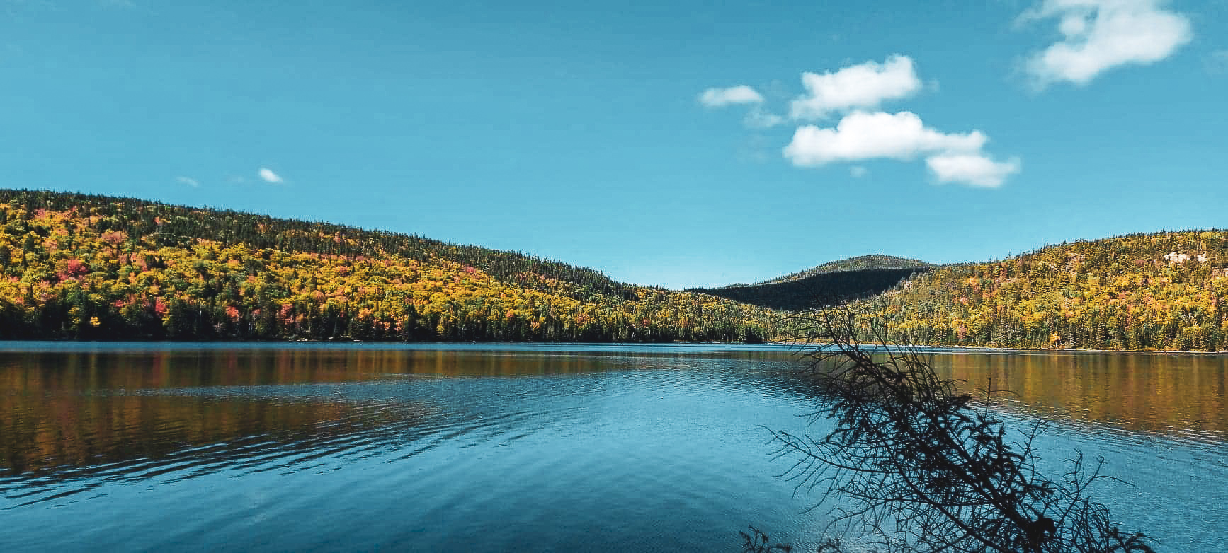 En premier plan se trouve un grand lac qui reflète le bleu du ciel. Derrière, la forêt est jaune, orange, verte et rouge.