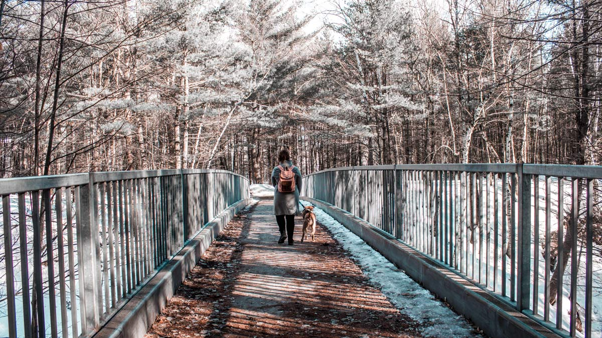 Alice et Champagne marche dos à la caméra. Il sont sur un petit pont enneigé.