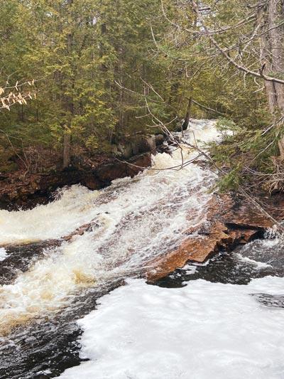 Chute d'eau dans une forêt