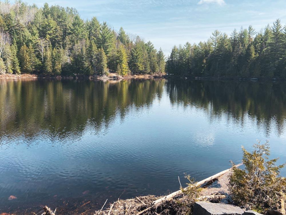 Un lac bleu encadrée d'une belle forêt verte.