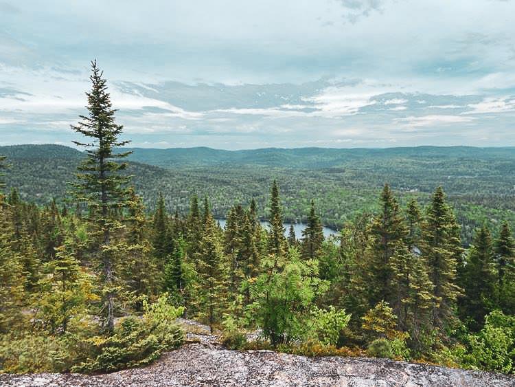 Paysage au sommet d'une montagne rocheuse - On y voir des conifères et des feuillus à perte de vue.