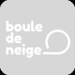 Example Boule De Neige