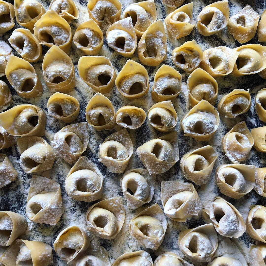 Rows of handmade tortellini