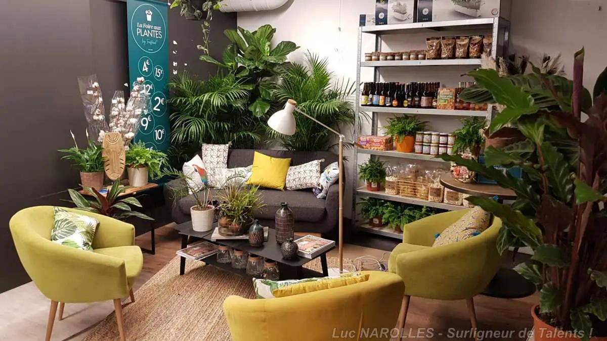 boutique végétalisée
