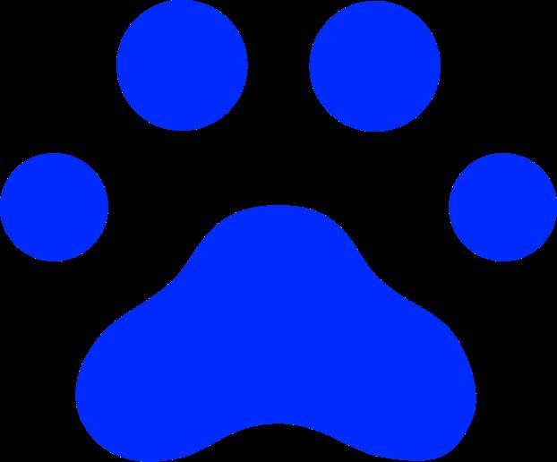 Keypup logo blue paw