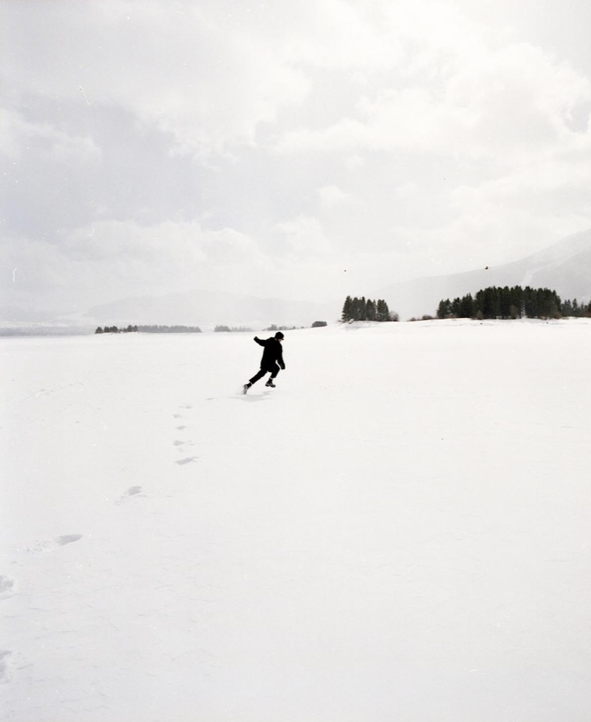 molly in snow field