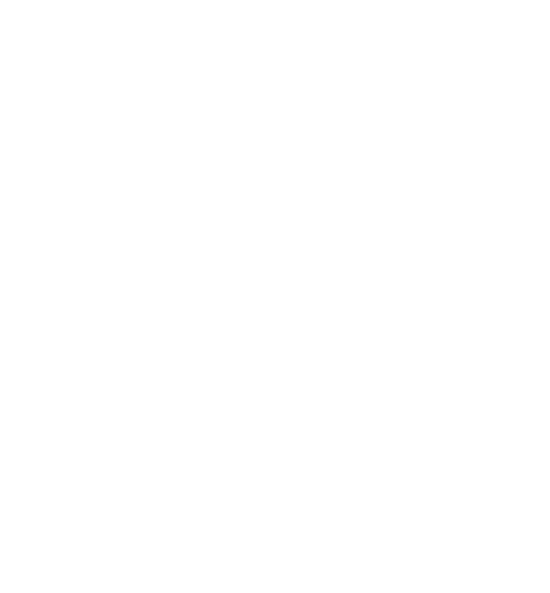 MZ Carpentry Builders LOGO White
