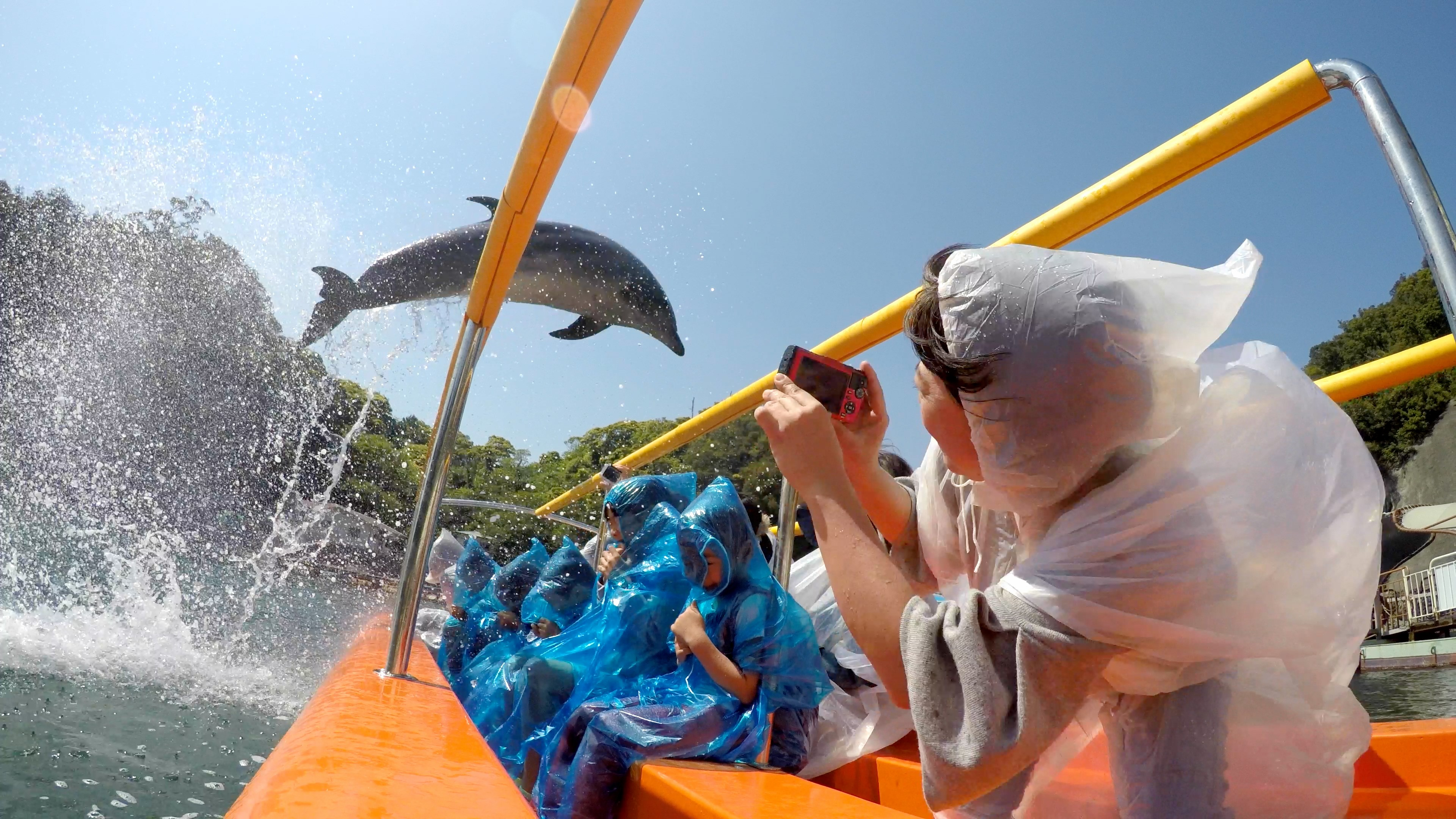 静岡県下田市の下田海中水族館におすすめのデートプランをインタビュー!