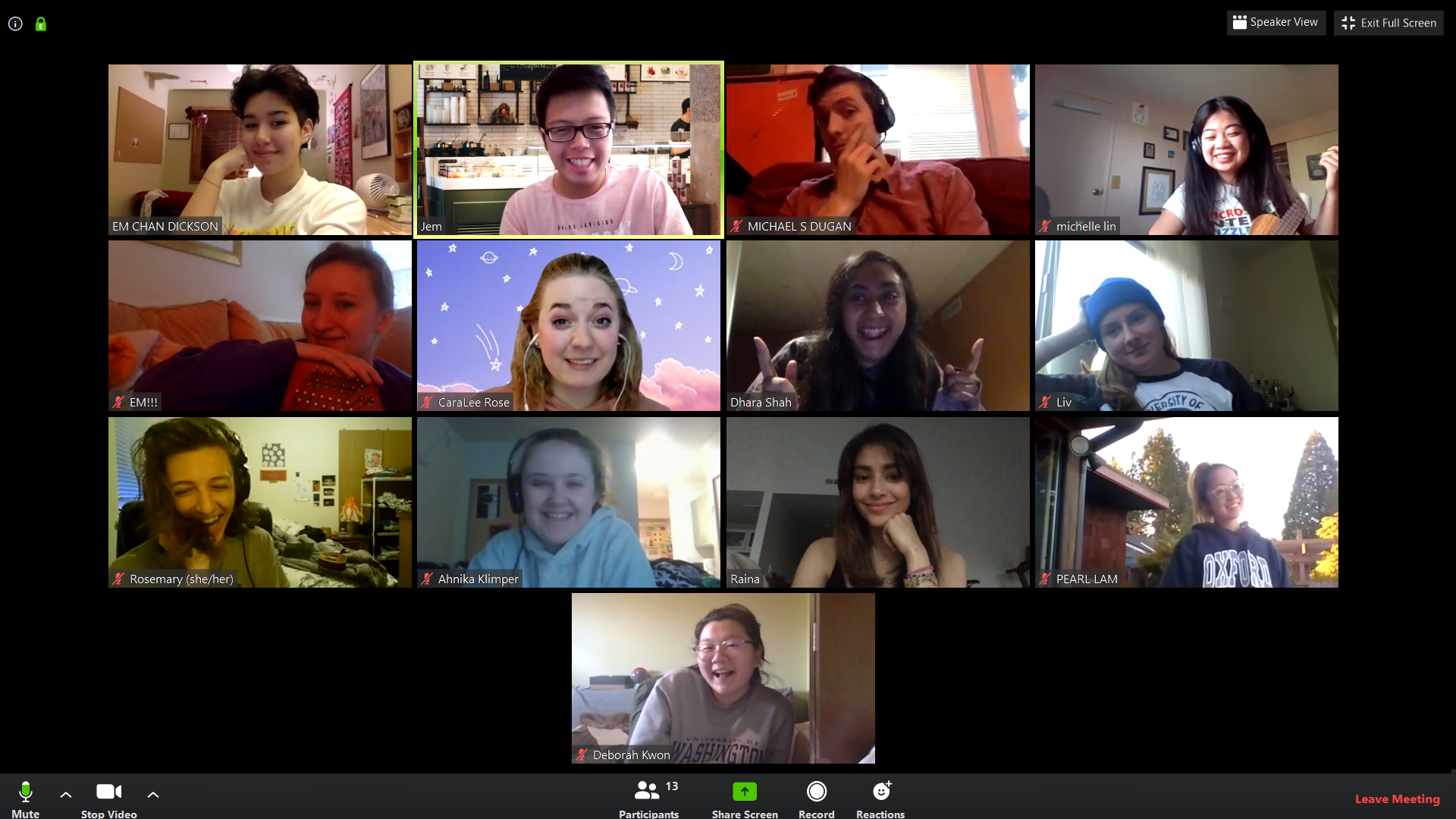 an image of the executive board members conducted through Zoom