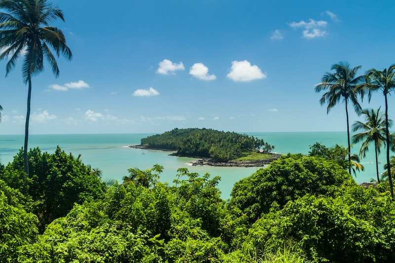 View of Île du Diable (Devil's Island) from Île Royale sprinkled with palm trees.