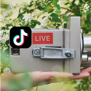 The only condition for going live on TikTok is that users need to have more than 1000 followers.