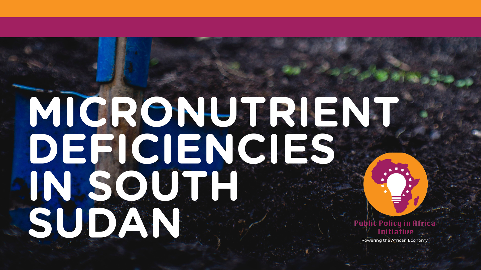 Micronutrient Deficiencies in South Sudan | A Policy Paper by Benita Kayembe