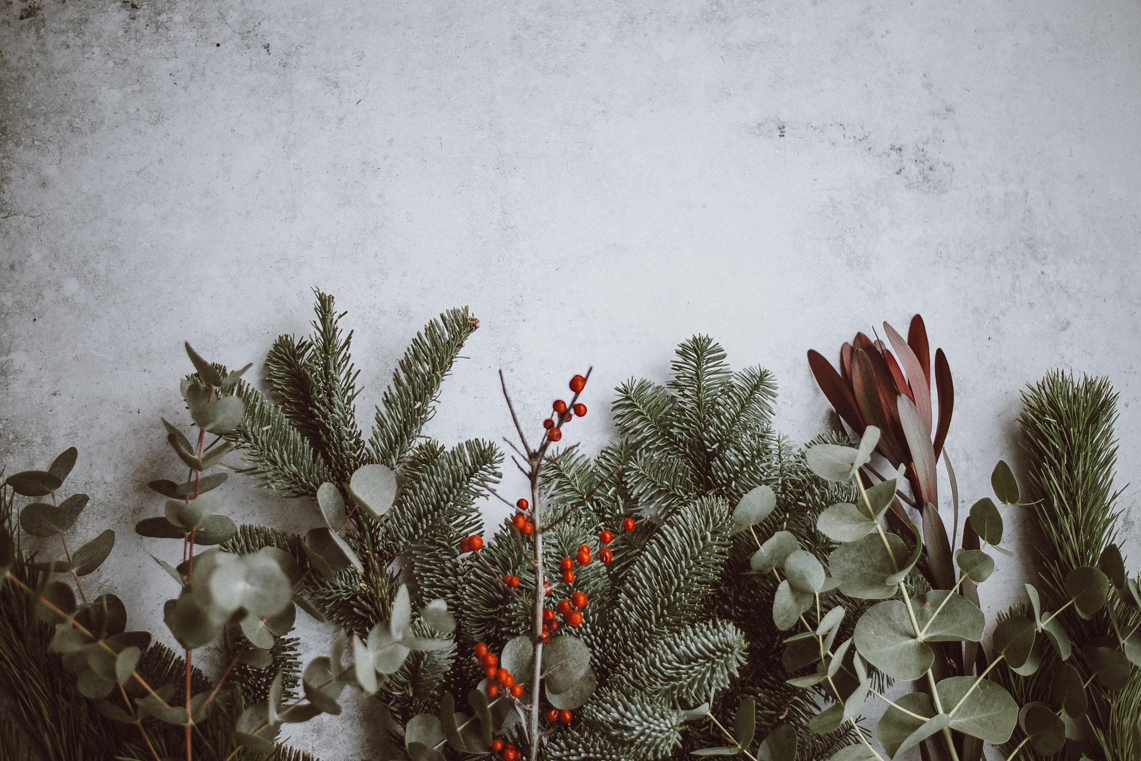 2020 Ecommerce Tips For The Christmas Holidays