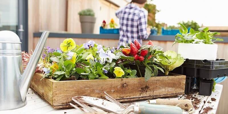 Demand for Garden Homes