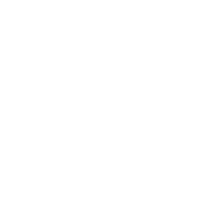 Salt Brewing Co. Logo