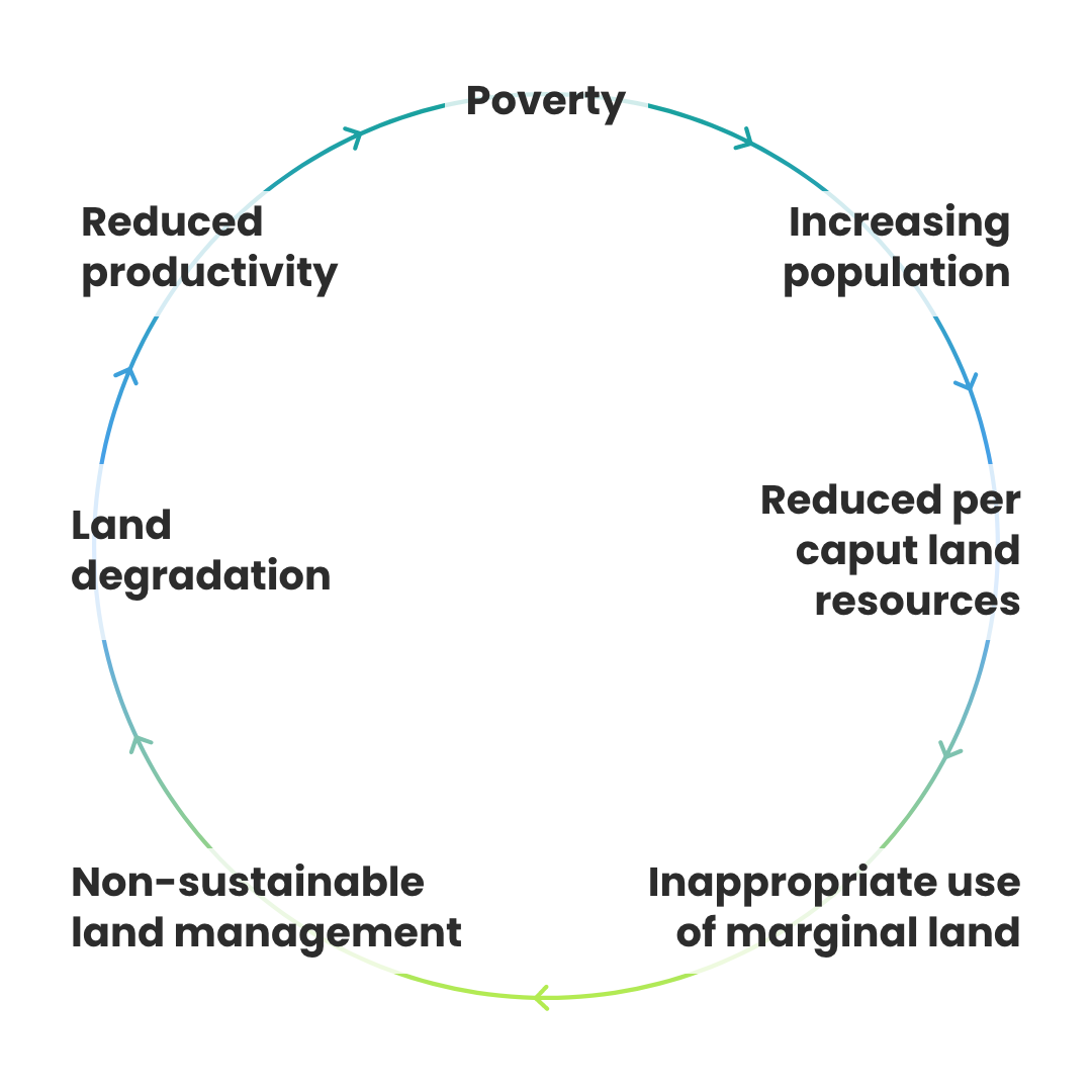 The vicious cycle of land degradation (UNCCD,2013)