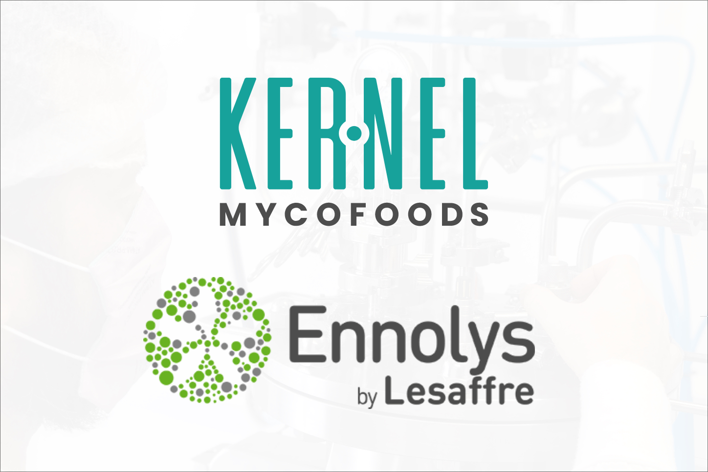 Kernel Mycofoods will start working with Ennolys to bring alternative protein to the market within the year