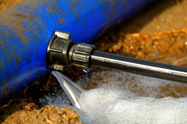 disclosing water damage