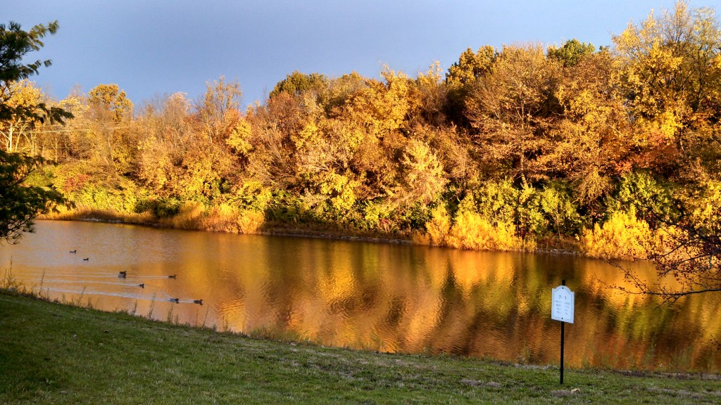Why this is awesome: Another image of the lake near my home, but this time I captured it on a beautiful fall ...