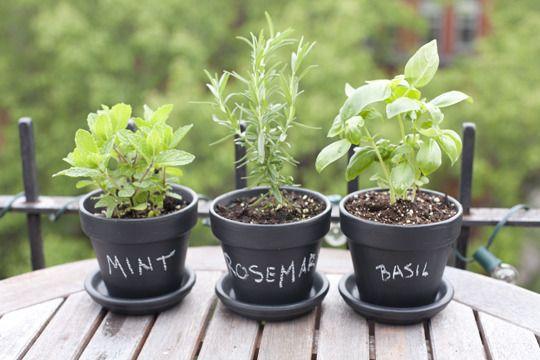 2018 Vision Board - Herb garden