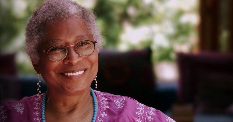 Steal This Quote: Alice Walker Redux