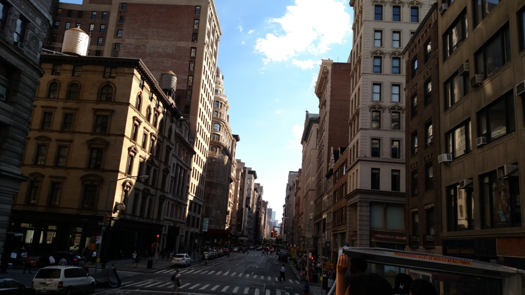 Streets of Downtown NYC
