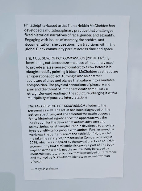 Artist statement for Tiona Nekkia McClodden