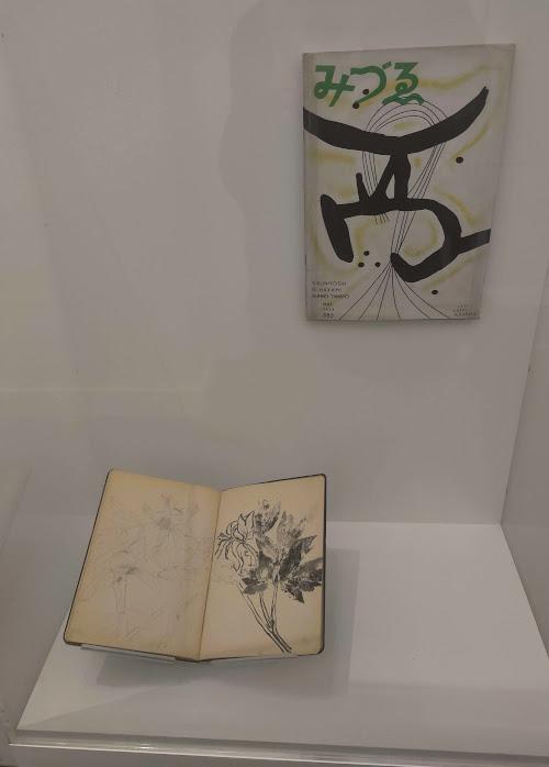 Early sketches by Kusama at NYBG