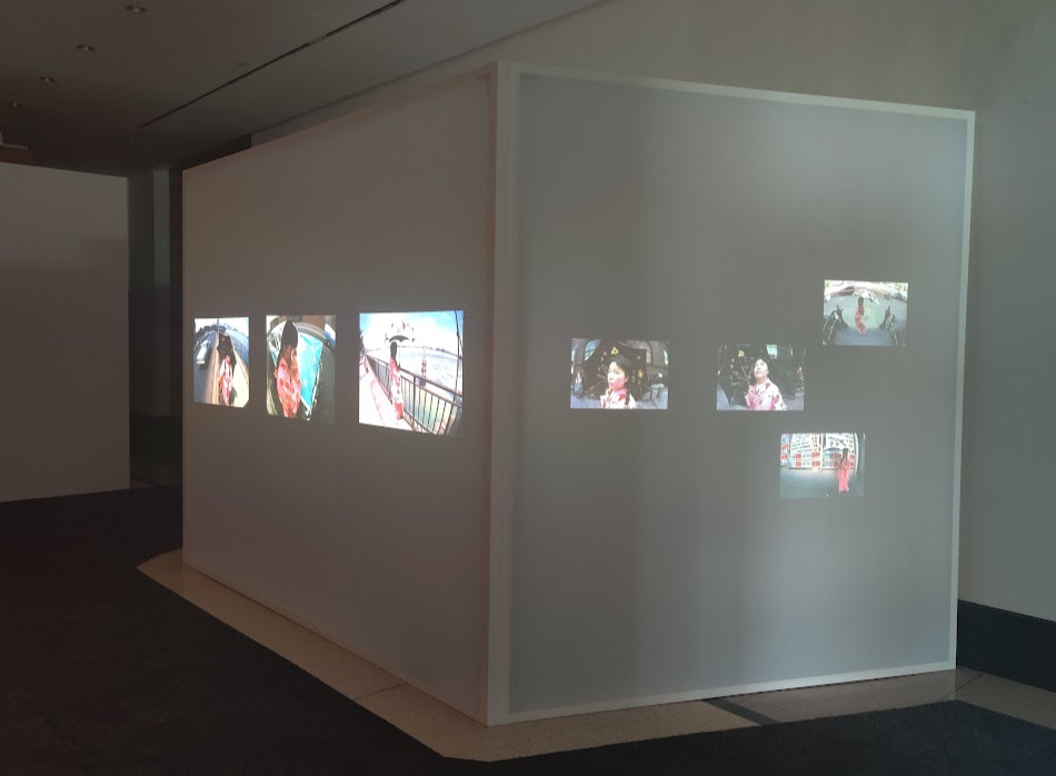 More of Walking Piece including the video installation