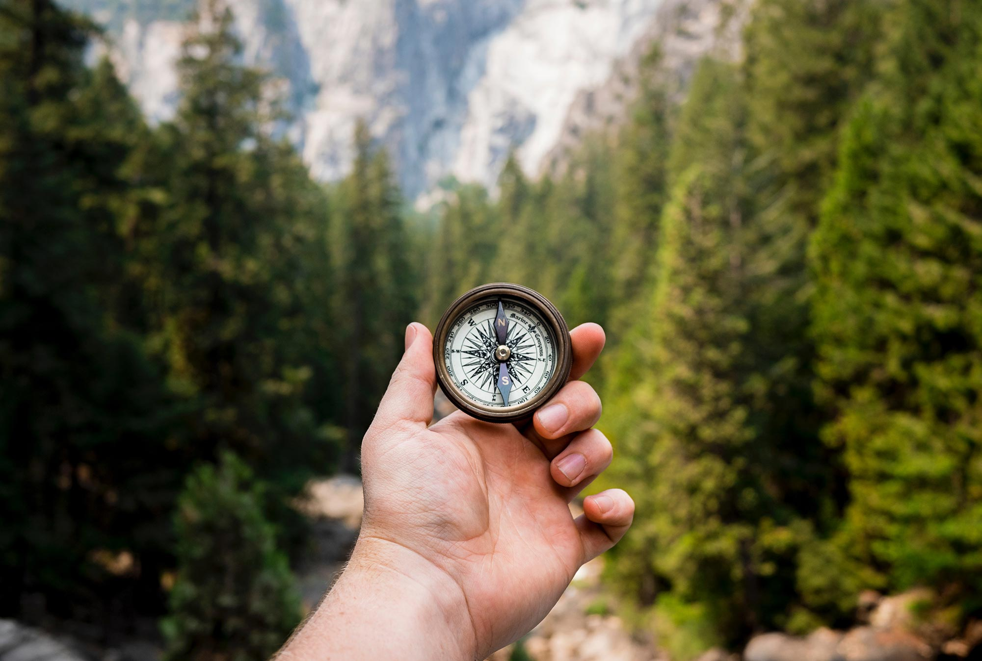 Hand holding a compass