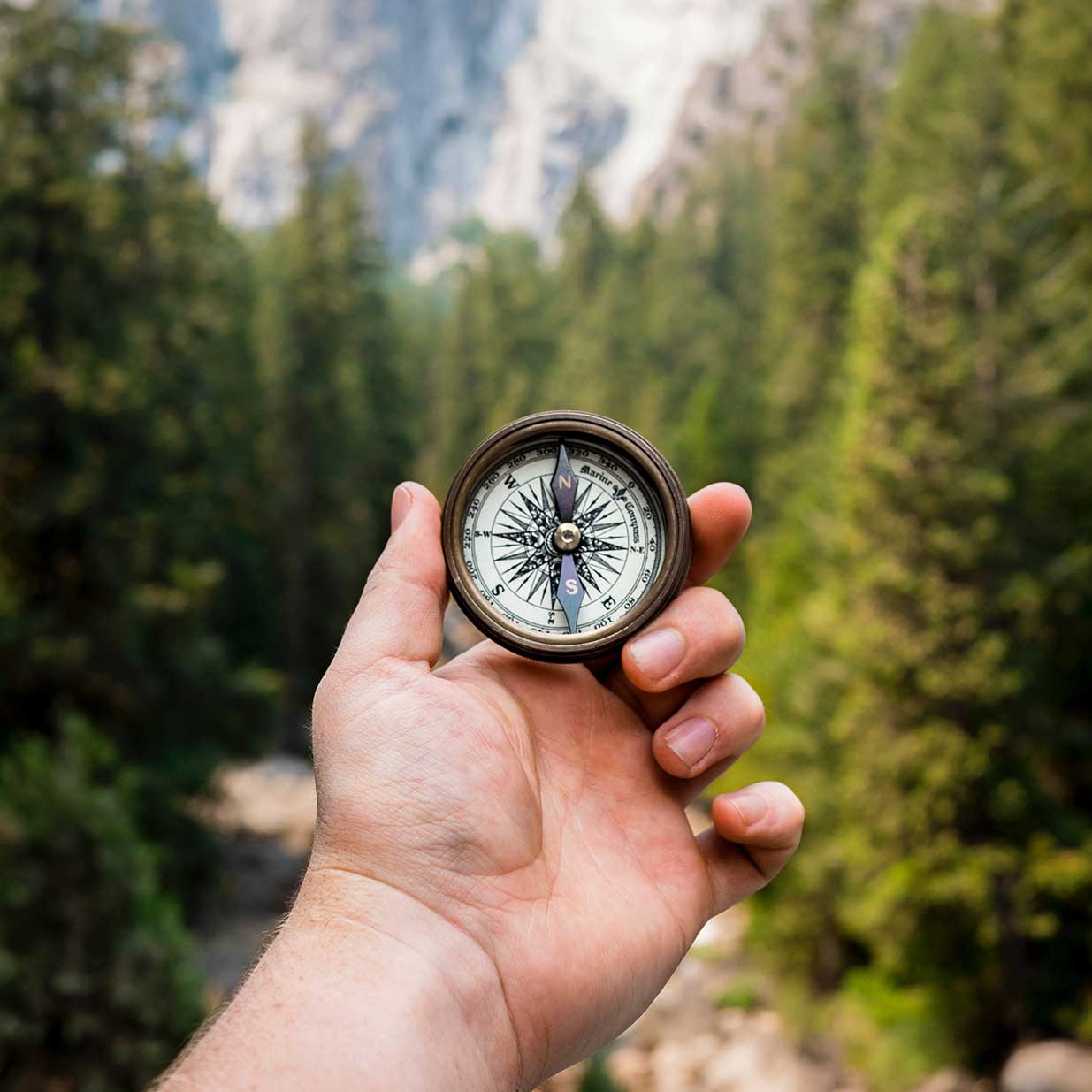 Hand holding a compass in a forest