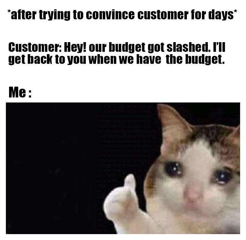 budget slash sales meme