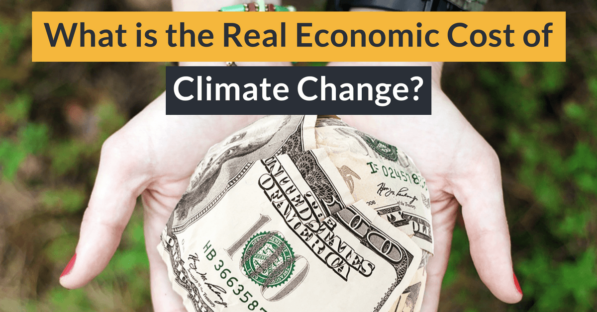 What is the Real Economic Cost of Climate Change?