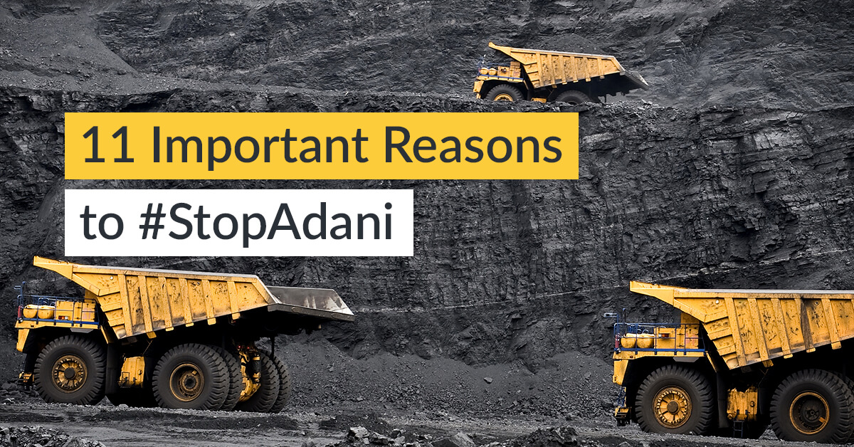 11 Important Reasons to Help Us #StopAdani