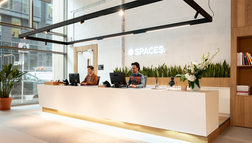 co working space the hague