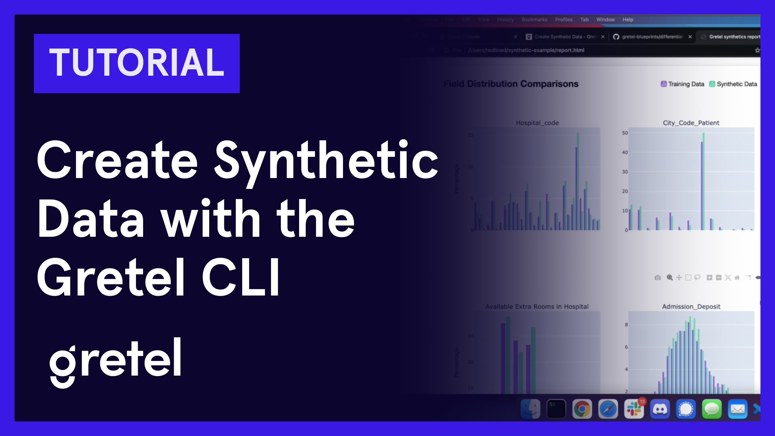 Create Synthetic Data with the Gretel CLI