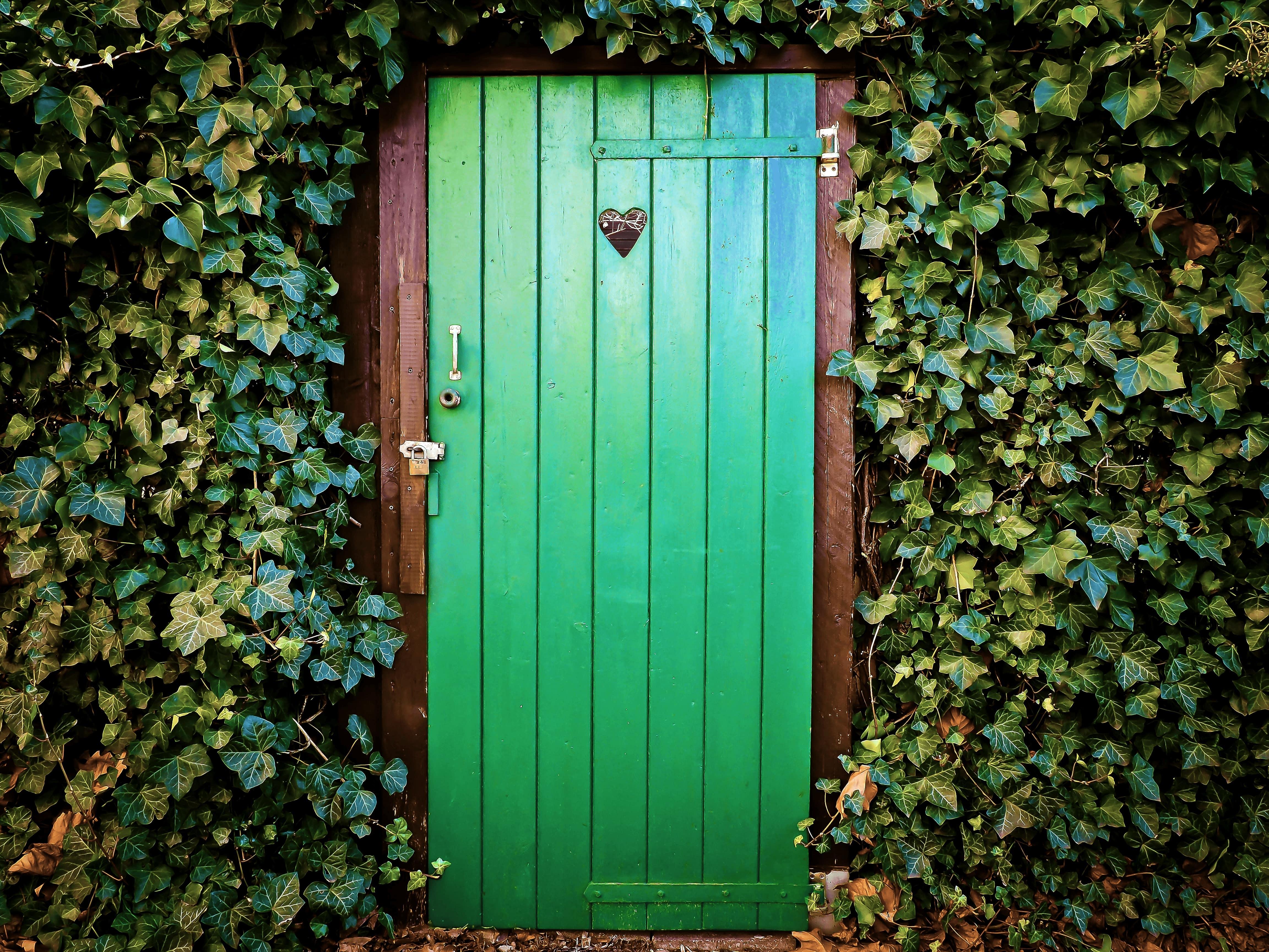 HogeNood Image green door