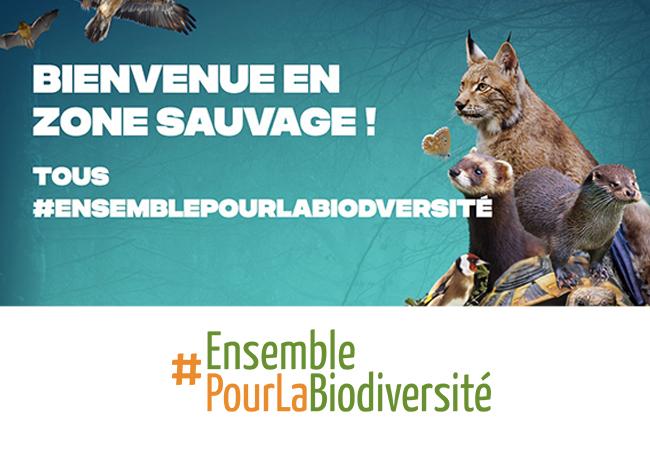 Le Brabant wallon soutient le mouvement belge «Ensemble pour la biodiversité»