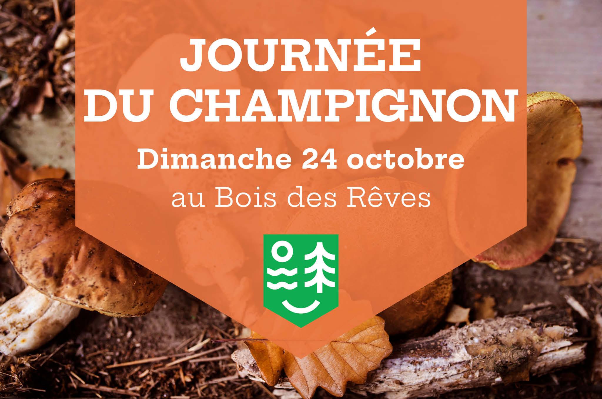 Journée du Champignon au Bois des Rêves