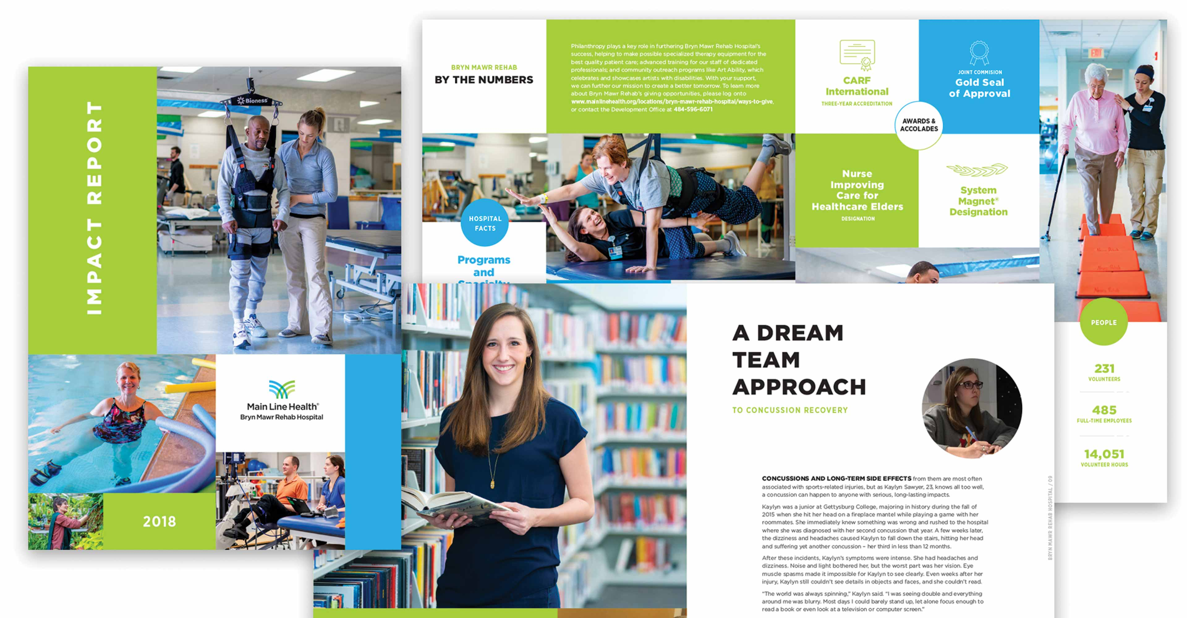 Health system capital campaign annual report