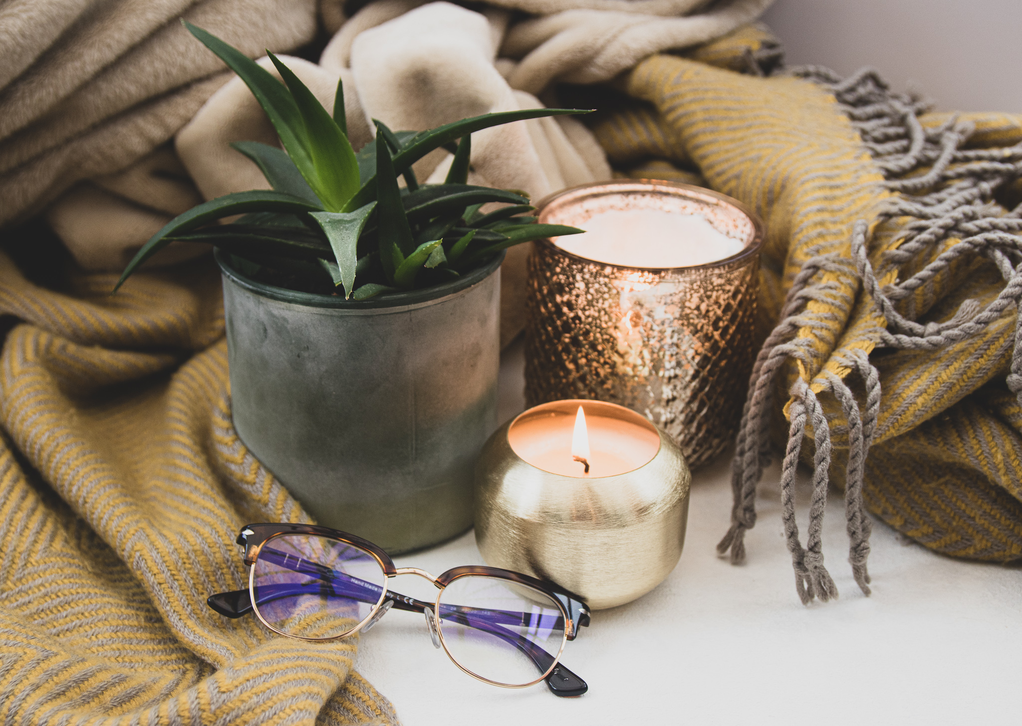 photo of candle and plant