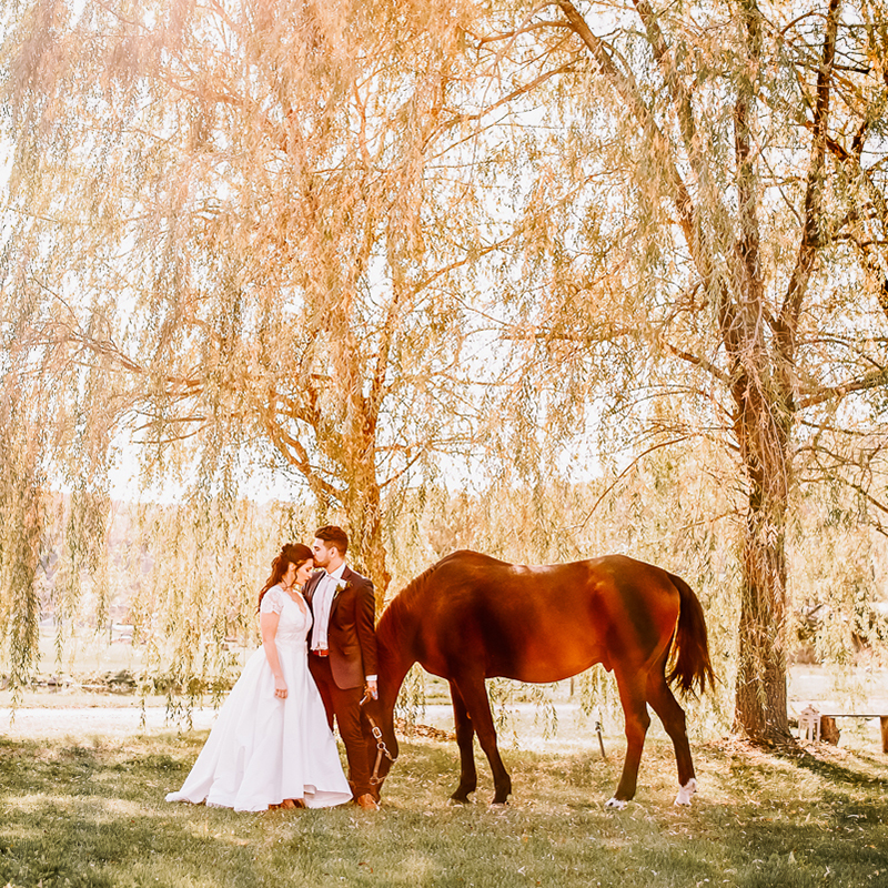 EQUESTRIAN WEDDING EDITORIAL AT GABLES AND GARDENS