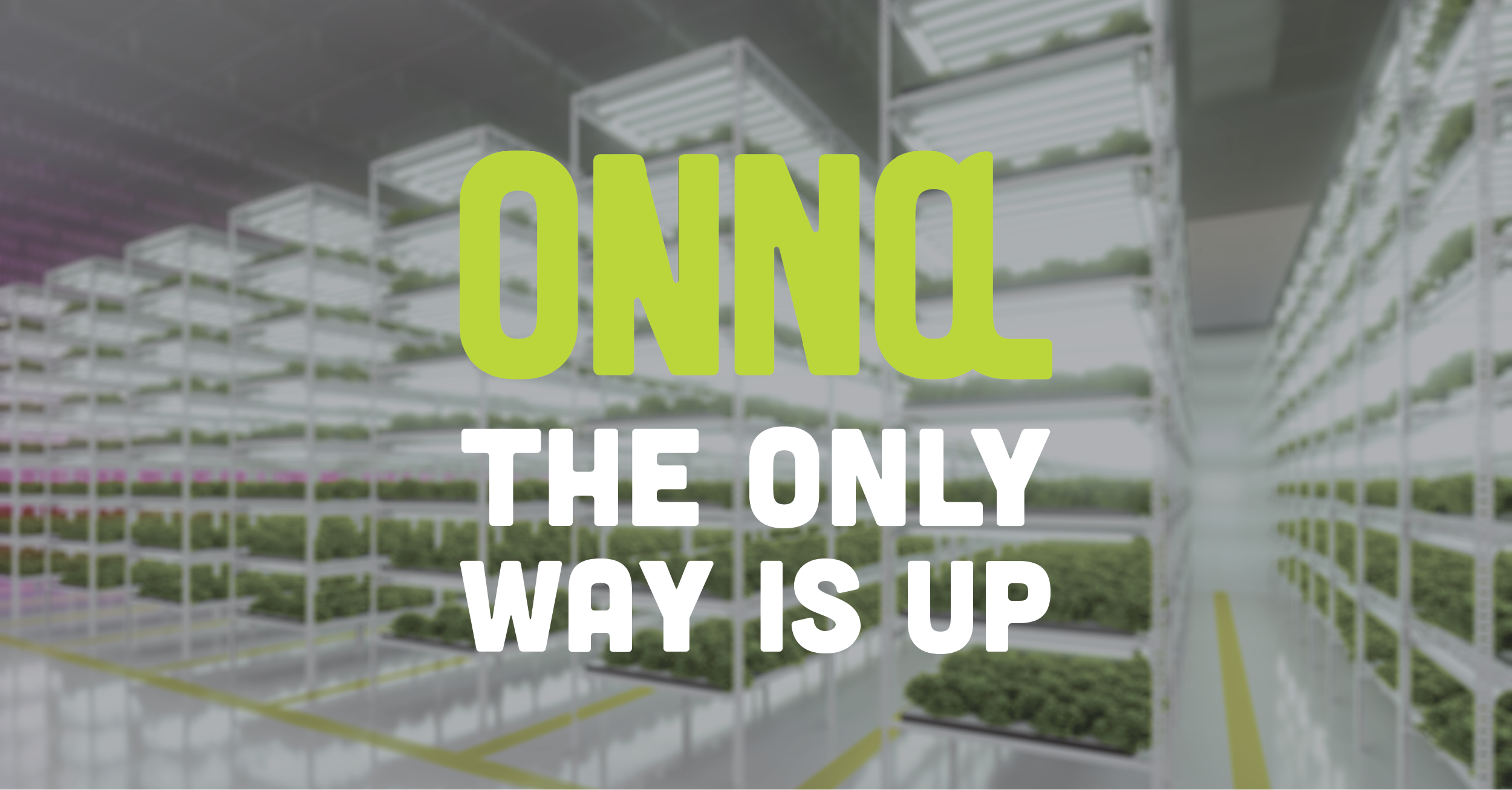 ONNA, The only way is up!