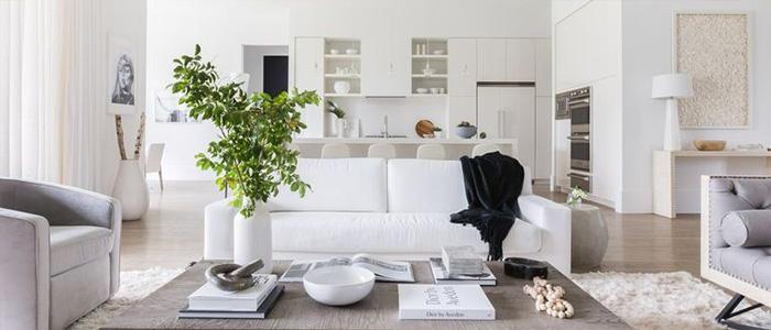 phòng khách hiện đại theo phong cách Washington
