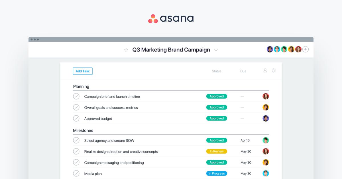 Asana task management