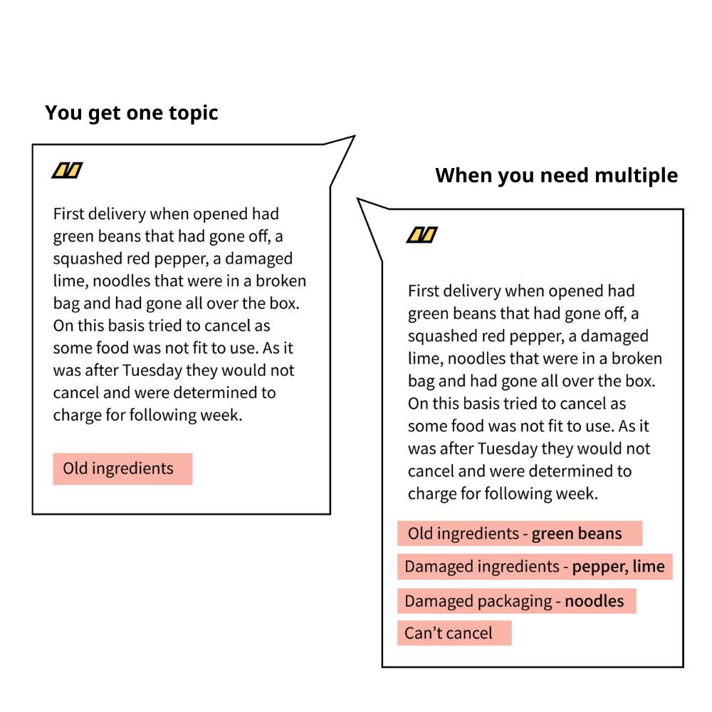 Multiple topic tagging customer feedback