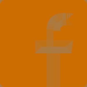 Facebook Logo in Orange